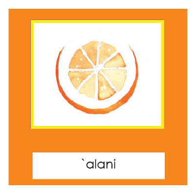 Fruits cross-section3-Part Cards - Hawaiian