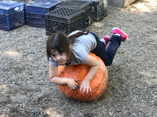 lillie and the pumpkin.jpg