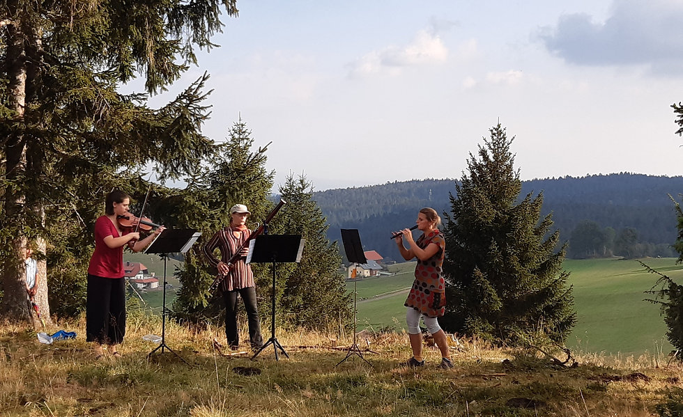 Klangspielwald musikwandern live konzert dachsberg