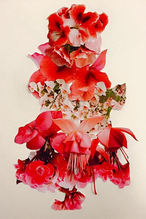 Claudia Veneroni red print