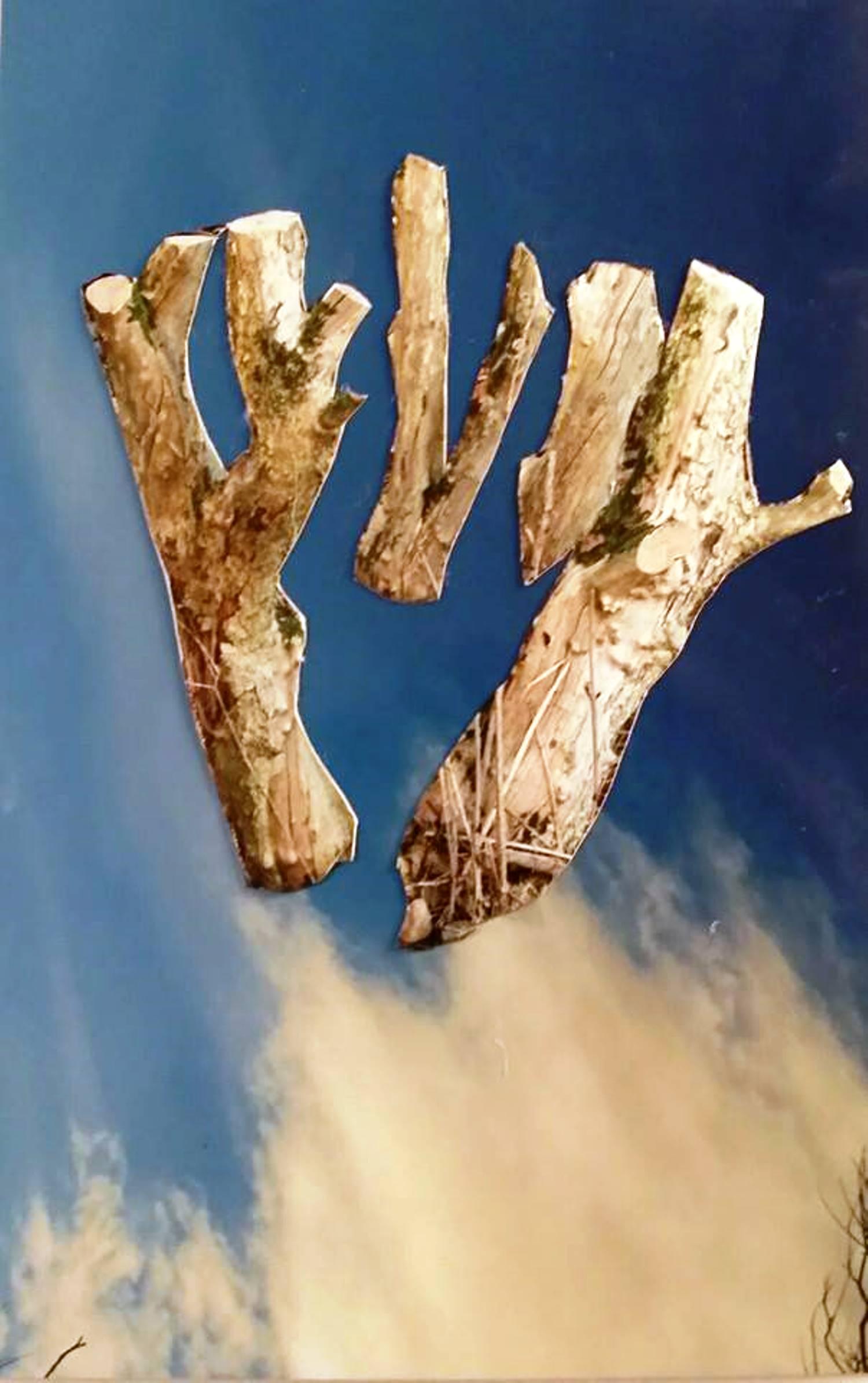 Flying pickets.jpg