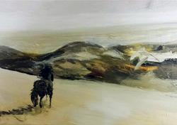 THE WILD STALLION (Sable Island)