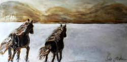 THE CONQUEST of Sable Island