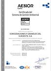 Congrasur Certificado Sistema Gestion Ambiental.png