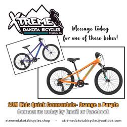 bikes_instock11.jpg