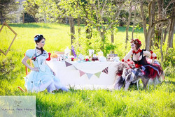 Wonderland  The Queen of Hearts Shot by Virginia Rose Hodges Photography fb_Photog Vrh Email_Vrhodge