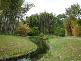 La Bambouseraie d'Anduze - Le jardin japonais