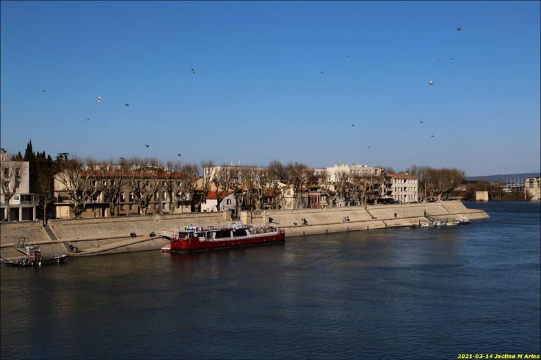 2021-03-14 Jacline M Arles 10.jpg