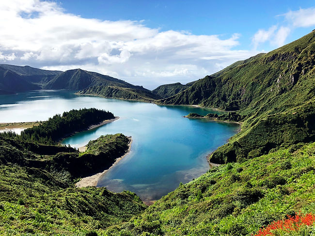 Lush greenery is everywhere in the Azores