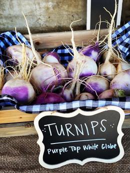 Turnips from the garden.JPG