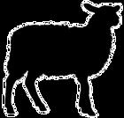 sheep_edited.png
