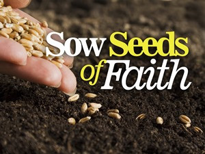 """Sowing Seeds"" We should do it for the LOVE of IT."