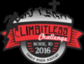 LIMBitless Challenge