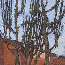 SAAS_Posetselskaya_Sycamore_trees_of_Par
