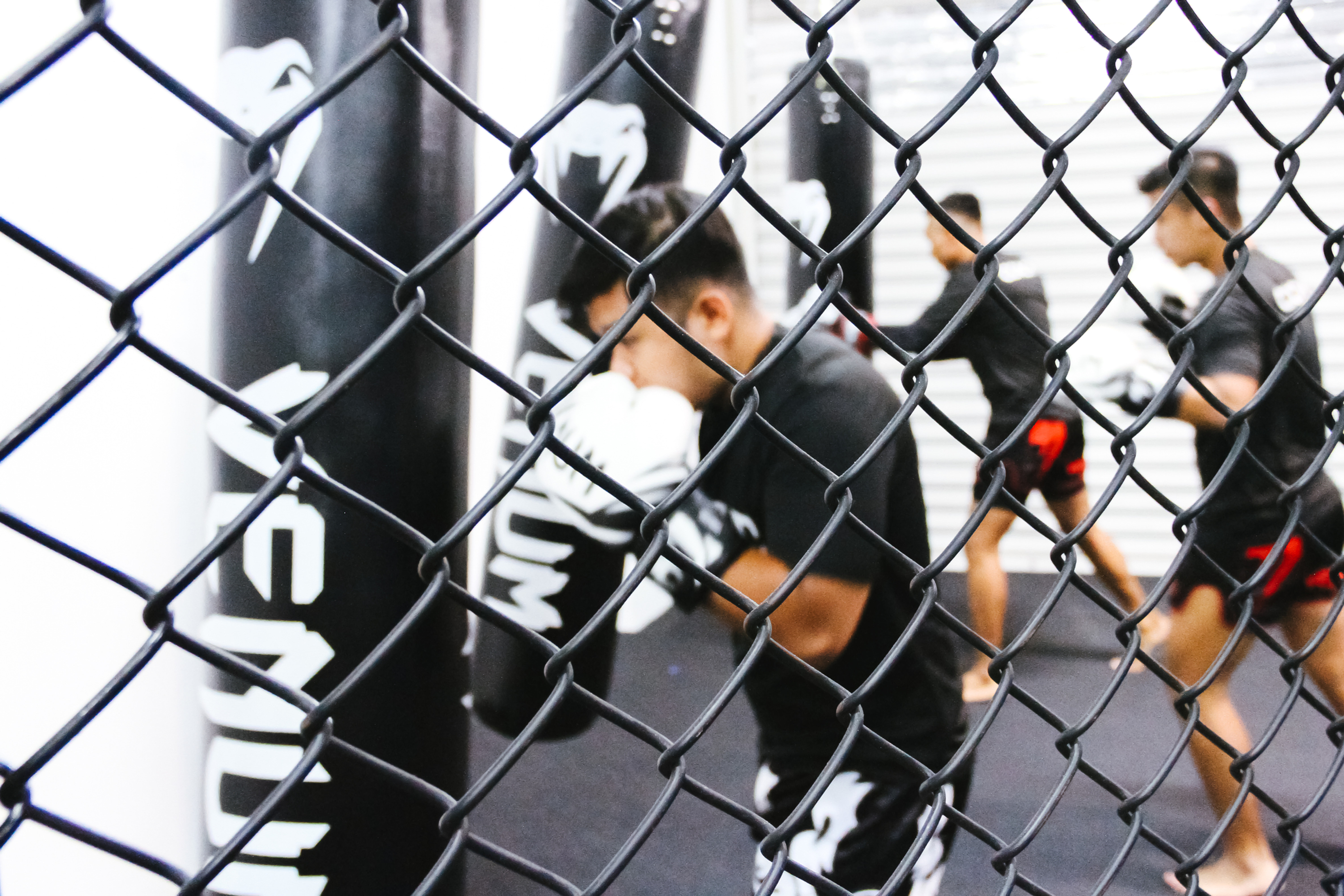 Boxing Sparring Only
