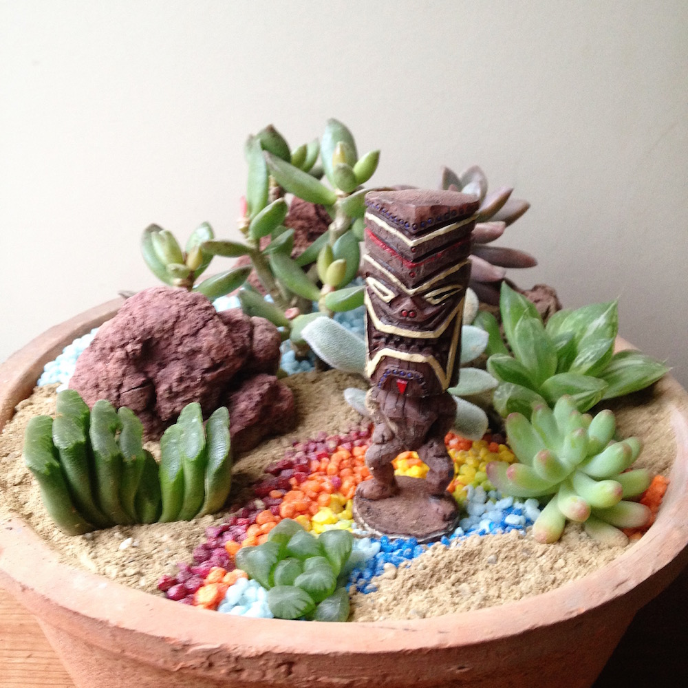 Hawaiian TIKI in Succulents