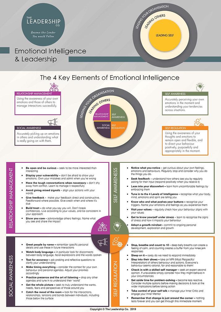 The_Leadership_Co_EQ_Infographic.jpg