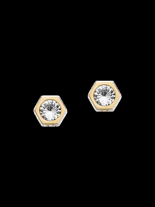 Earrings A690039