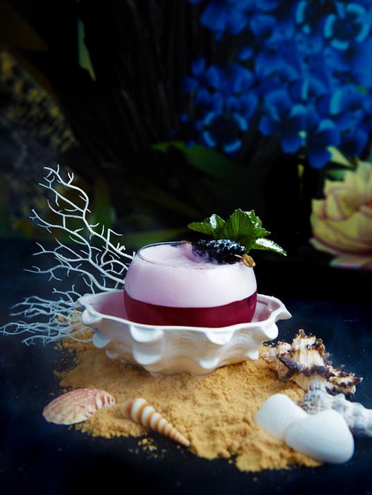 Aquaria - She Sells Seashell by the Seas