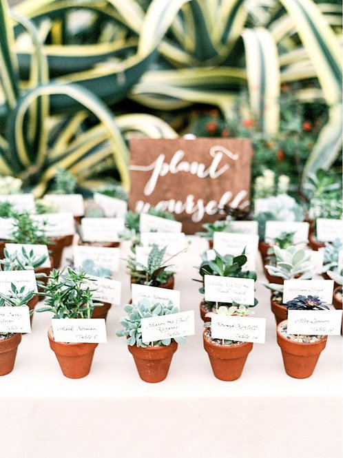 'Plant Yourself' Wedding Favours