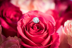 Ring in a Rose