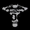 SY_Anatomy_logo-300x300.png