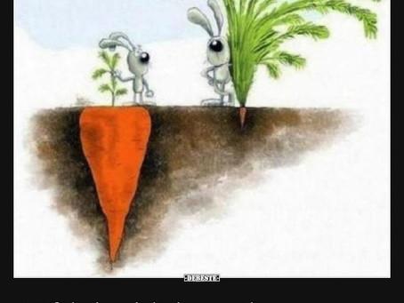 Was haben erfolgreiche Menschen alle gemeinsam?