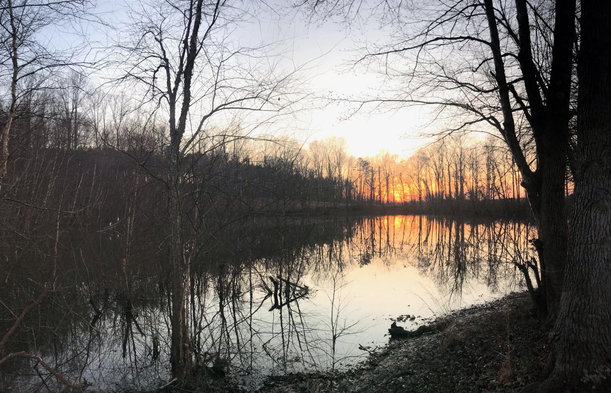 heart-sunset02