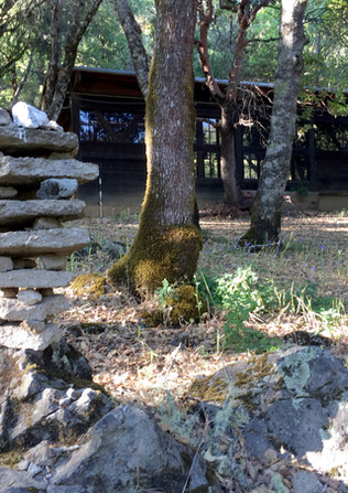 Deerpark Monastics (5).JPG