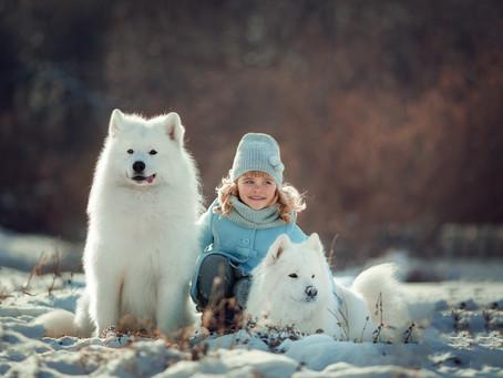 Бесплатная фотосессия с собакой-улыбакой Петей 4 февраля!