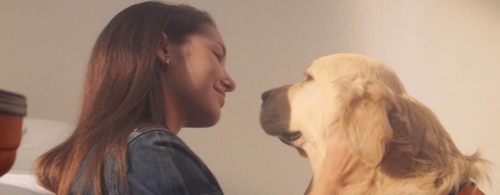 Fundación Affinity - Animales que curan