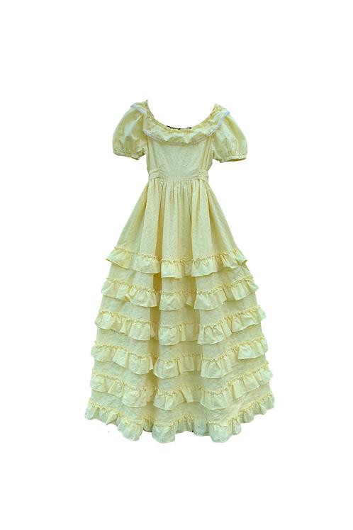 Vintage Southern Belle Style Dress