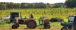 Bob-Tractor-Water-Hemp-Christmas-1
