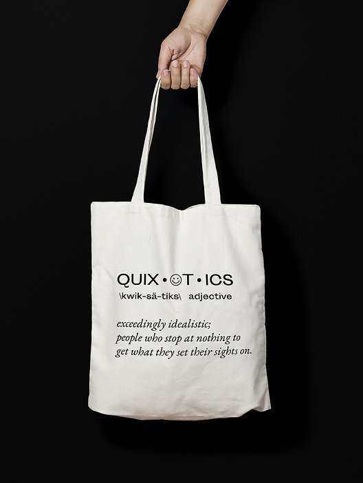 quixotics definition bag.jpg