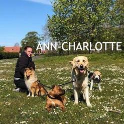 Ann-Charlotte är både hundskötare och undersköterska, så på Hundhaga kan alltså även vi människor känna oss trygga.   Liksom sina kollegor har Ann-Charlotte personlig hunderfarenhet.