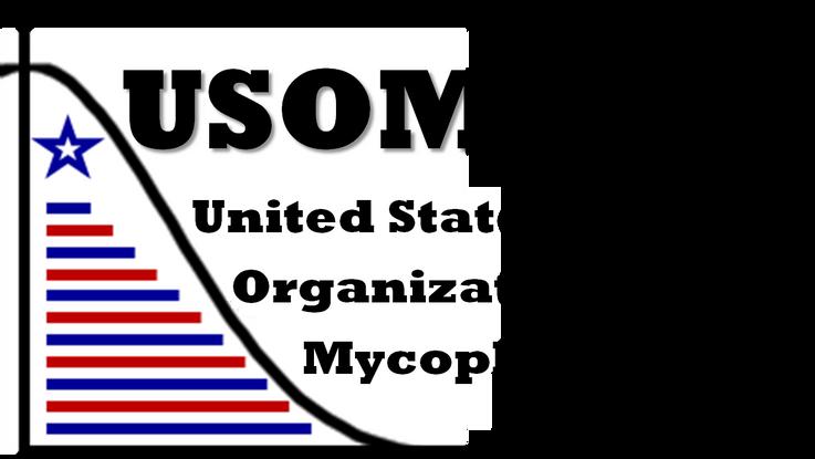 Mycoplasmology: Always Ahead of the Curve