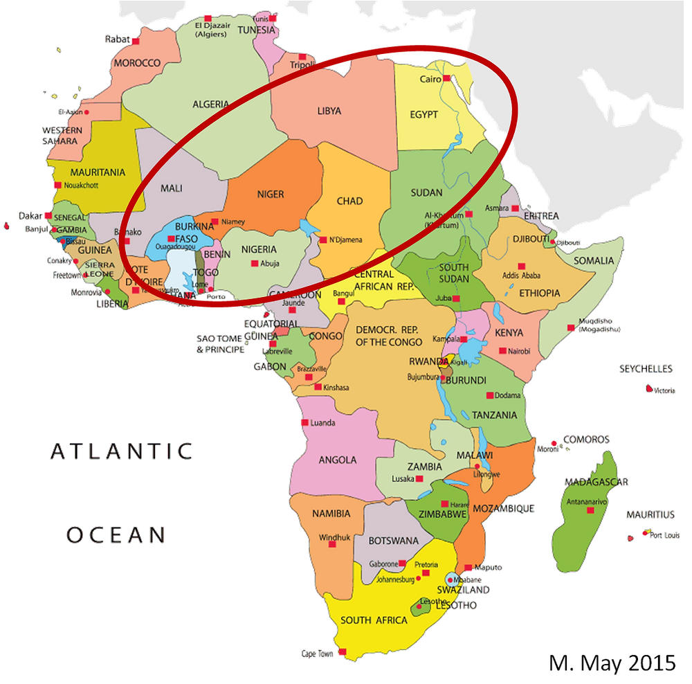 H5N1 africa map.png