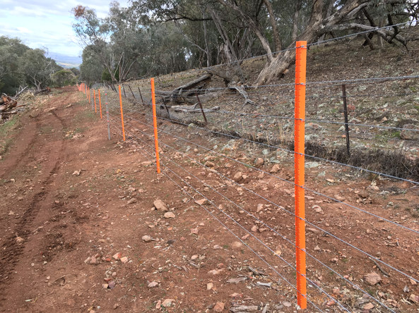 Completed Fence with additional droppers