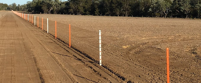 Feral Fencing - Completed Fence