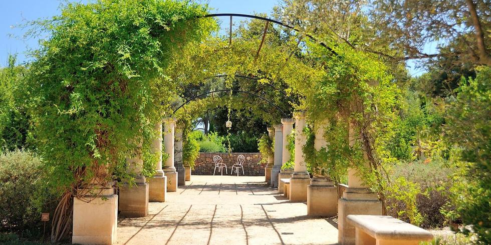 Balade Jardin Botanique