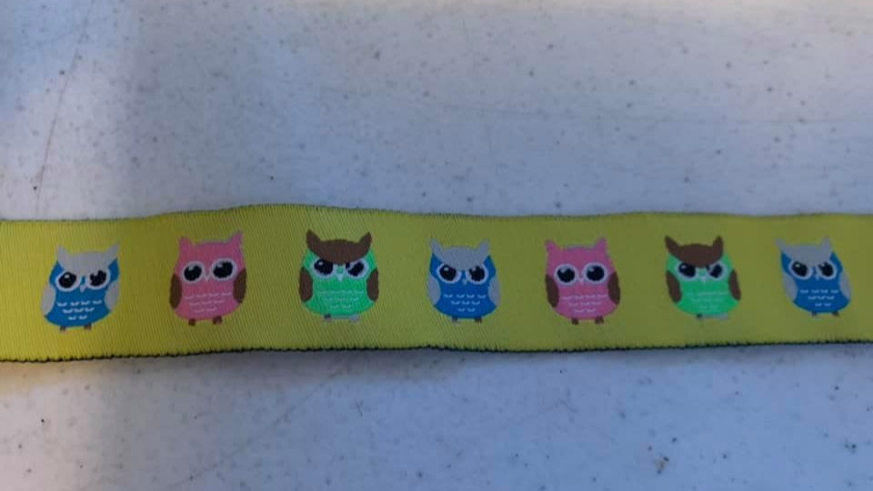 "1"" Collar,Martingale,or Leash #40"