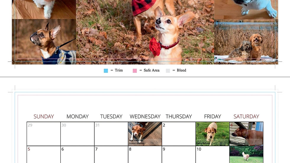 2020 Perfect Pet Photo Calendar