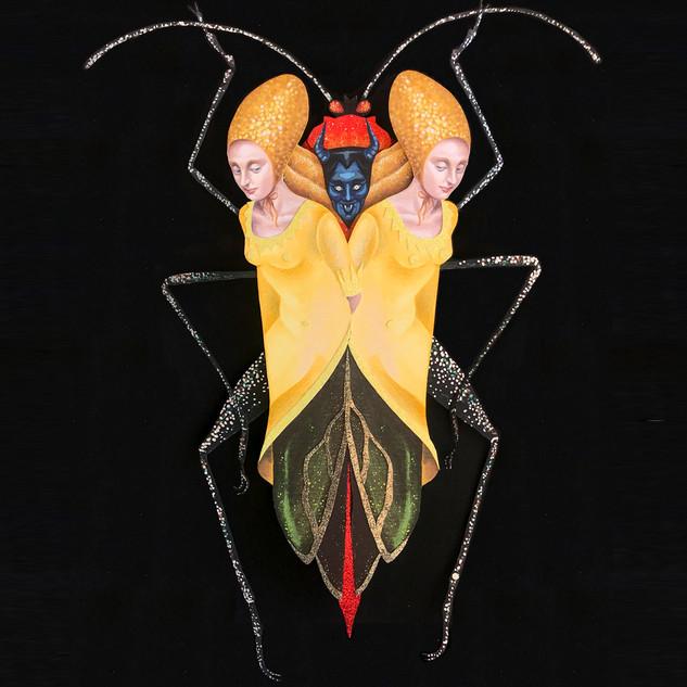 Sundarus Coreidae.jpg