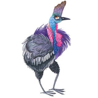 Sassy Fashionista Bird.jpg