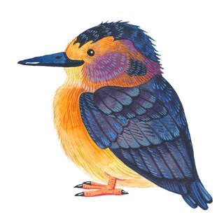 Little Blue Bird.jpg