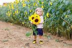cute-adorable-toddler-girl-sunflower-fie