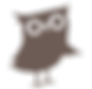 Wisdom Nest_owl-08.png