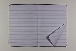 untitled plane fold
