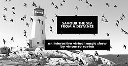 More Online Shows For Vincenzo Ravina
