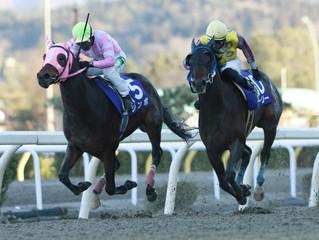 函館10レース「横津岳特別」で勝ちを収めた管理競走馬シンボ